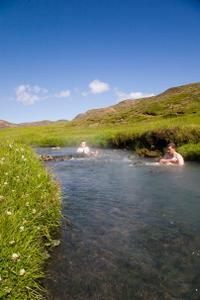 day-trip-from-reykjavik-hiking-and-hot-springs-adventure-in-in-reykjavik-115382
